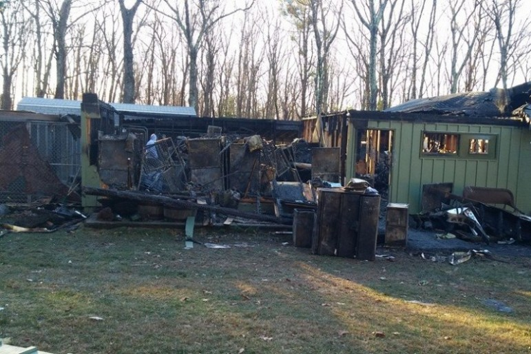 Not only locally, but nationally, folks have rallied around the Sweetpea animal shelter following a Nov. 21 fire.