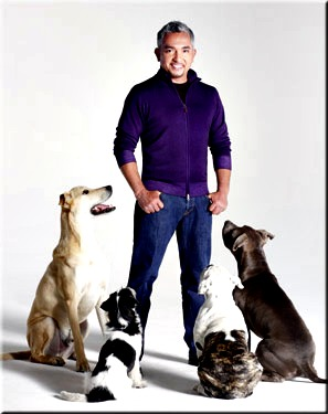 Cesar Millan is at the Hanover Friday, March 4