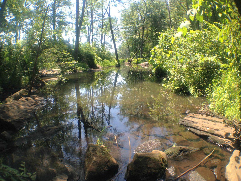 Broad Meadow Brook